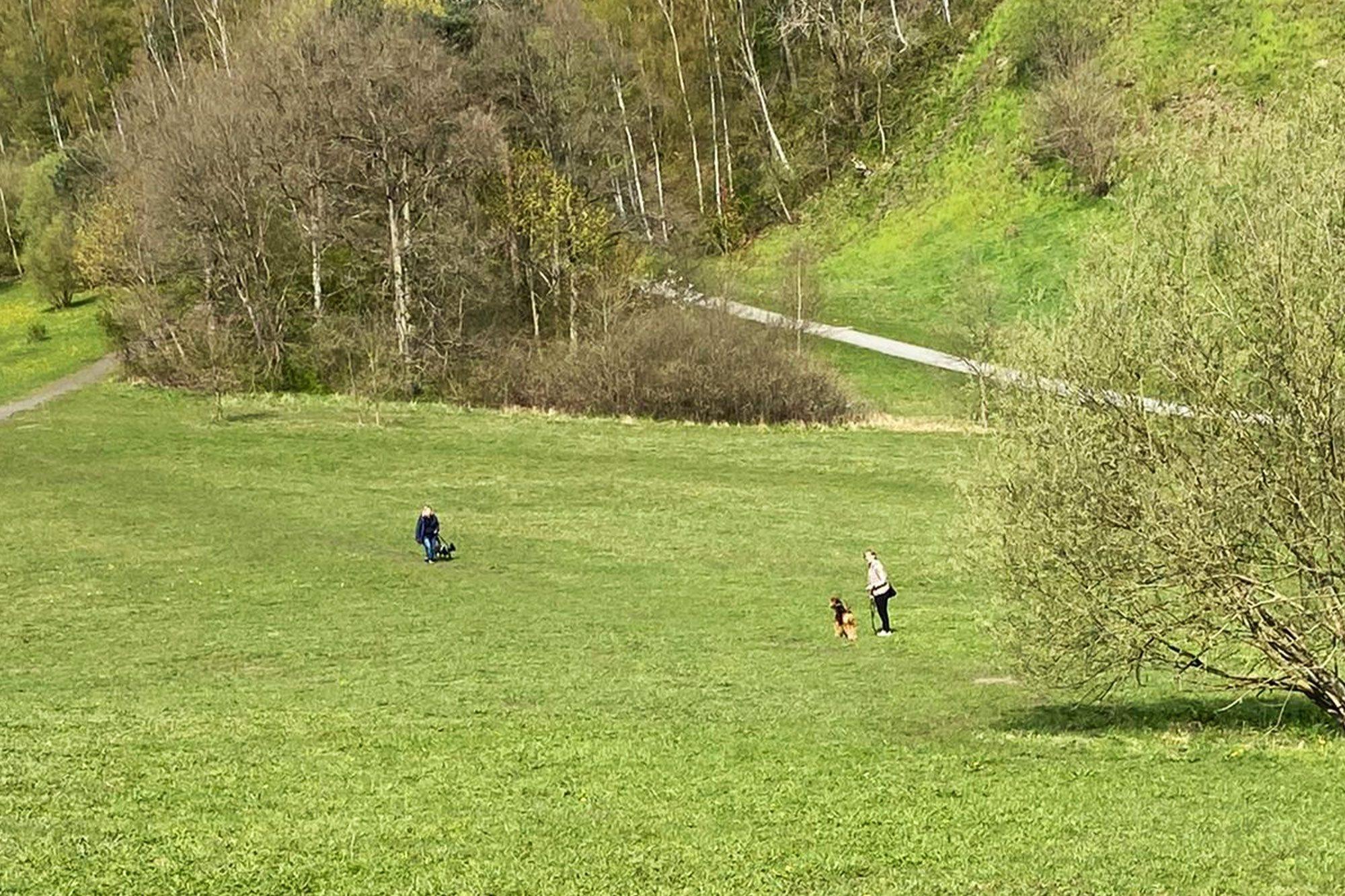 Lernspaziergang in der Kieskuhle Rissen